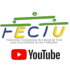 FECTU's YouTube Channel
