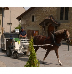Electric assist horse-drawn vehicles in Switzerland