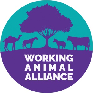 Working Animal Alliance (WAA)