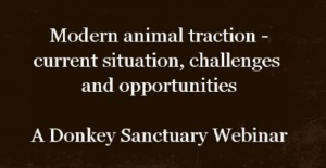Modern animal traction: current situation, challenges and opportunities